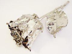 sg6336-roos-gedenken-bloem-verzilveren-verzilverd-herinnering-edelsmid-www.tonvandenhout.nl-aandenken-edelsmeden-zilver-goudsmid-roermond-rozen-bloemen-juwelier-uniek-smid